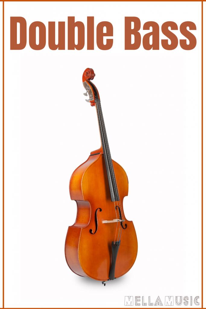 Double Bass Instrument