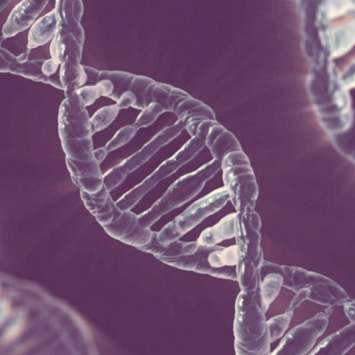 Is Music Talent in DNA? I Tested it to Find Out